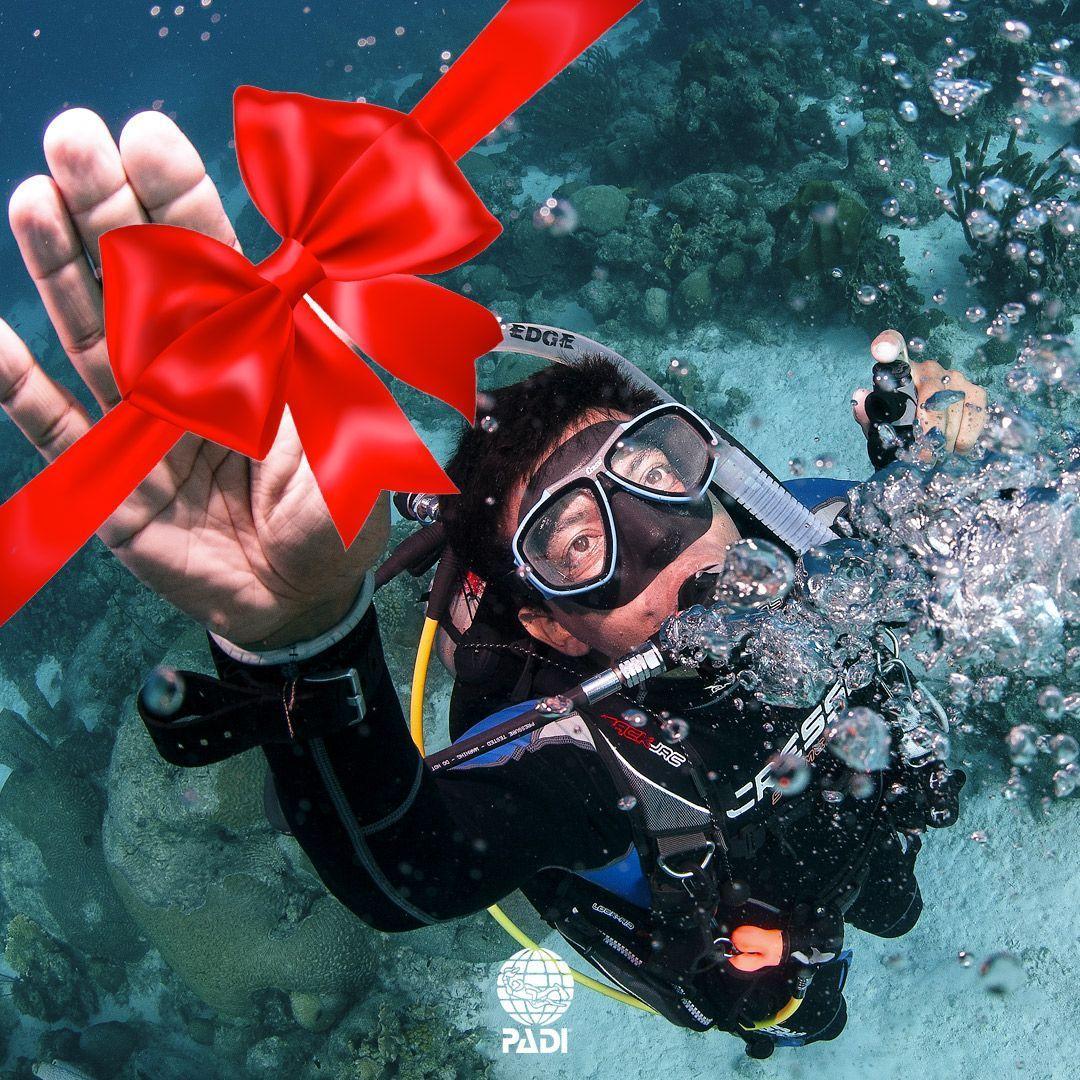 Regala curso de buceo PADI Scuba Diver