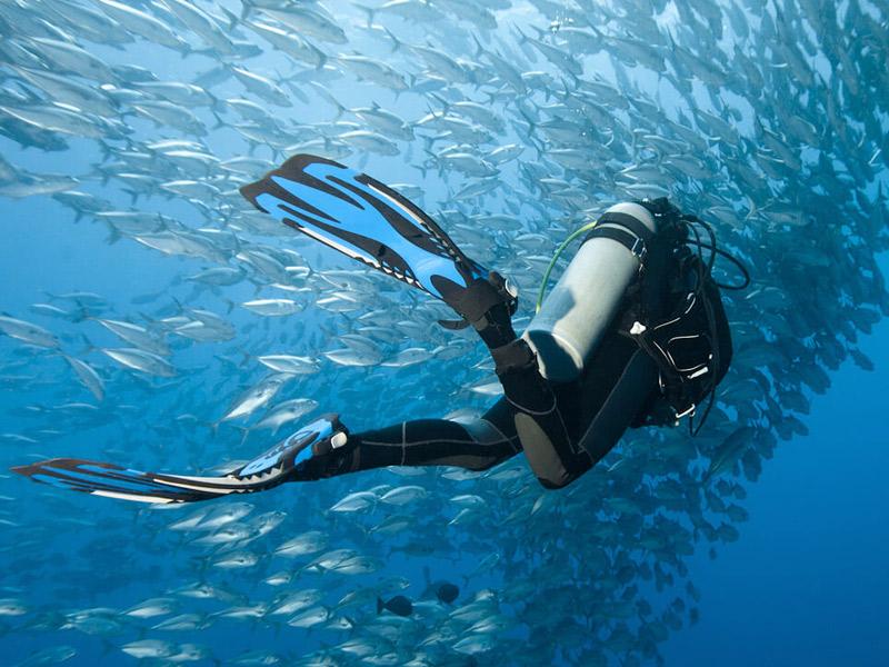 Cursos de buceo en Gran Canaria