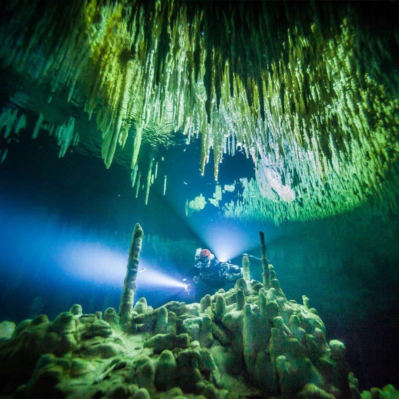 buceo en cenote dreamgate