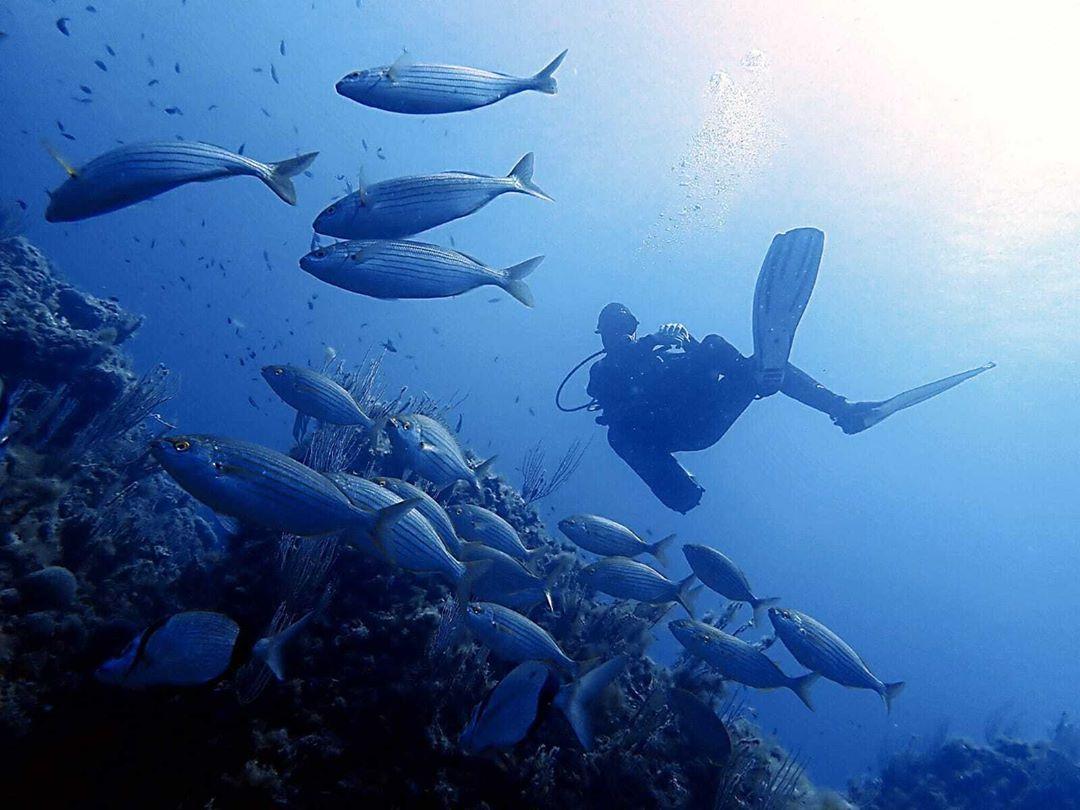 Advanced Open Water Diver Estartit Islas MEdas