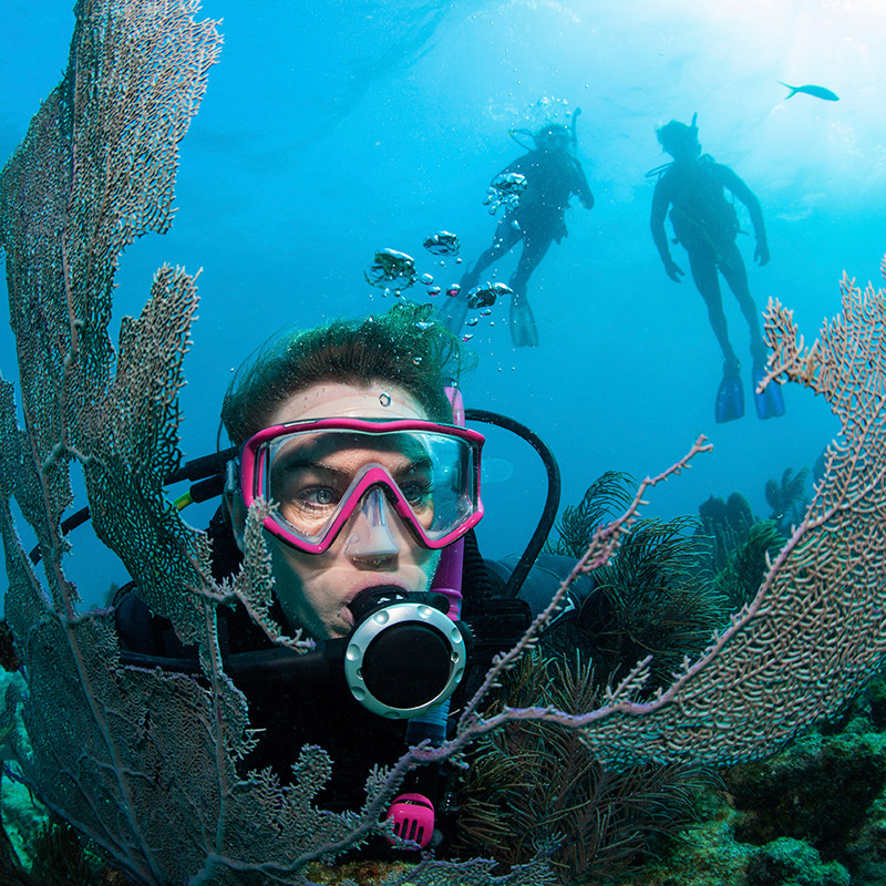 Discover Scuba Diving Cabo de Palos