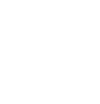 Brave Divers