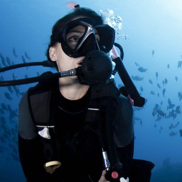 ofert especial curso de buceo open water