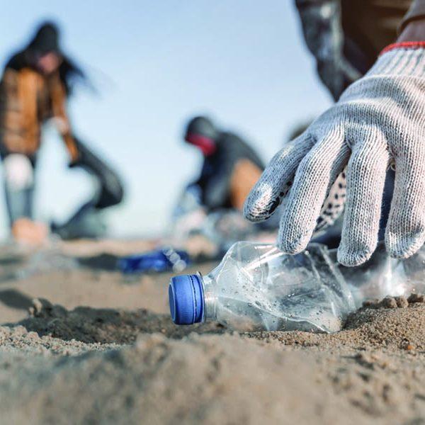 quiz limpiezas de playas y fondos marinos