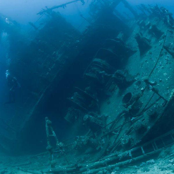 Quiz sobre viajes de buceo al Mar Rojo
