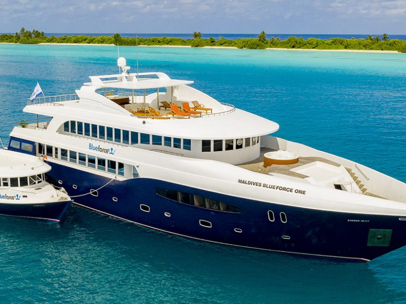 Viaje buceo Vida a Bordo Maldivas